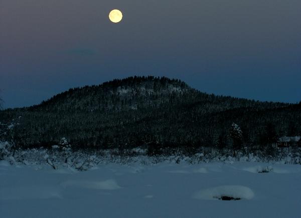 Laponie Pendant La Nuit Polaire