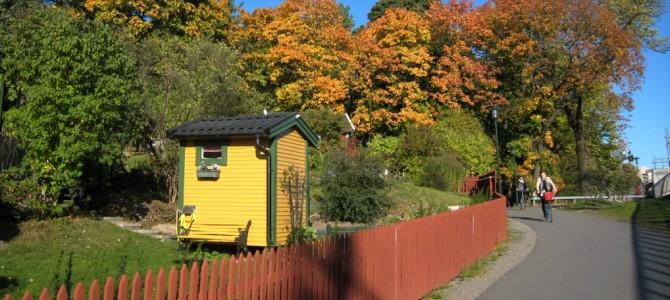 Stockholm en 2h, 2 jours, 2 semaines : les bons plans en automne.