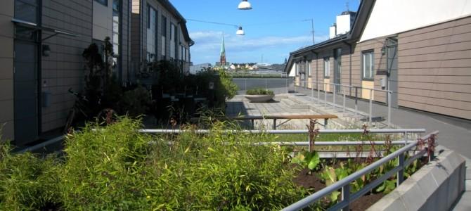Klara Zenit : village sur un toit de Stockholm.